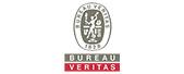 Veritas company logo